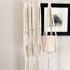 Plant hangers (special)