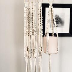 Single Plant hangers.