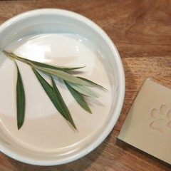 Natural Dog Soap