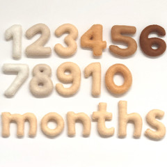 Baby Milestone Felt numbers Natural Colour