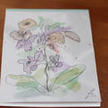 Watercolour Ruled Notepad - Flowers and Doodles