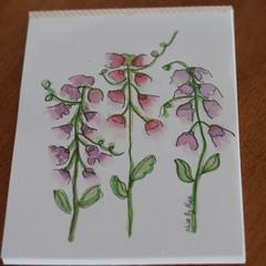 Watercolour Ruled Notepad - Sweet Peas