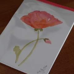 Watercolour Ruled Notepad - Single Flower and bUd