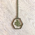 Bronze Framed Hexagon Pendant Necklace with real foliage (Ming Fern)