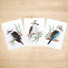 Kookaburra Australian Bird Art Prints Set of 3, Bird art print A5 or A4