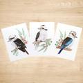Kookaburra Art Prints Set of 3 A5