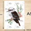Kookaburra Australian Bird Art Prints Set of 3, Bird art print A5 or A4