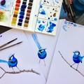 Splendid Blue Wren Australian Bird Art Prints Set of 3, Bird Art Print A5 or A4