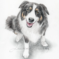 Pet Portrait A5 COLOUR custom drawing from your photo of animal, bird, dog, cat