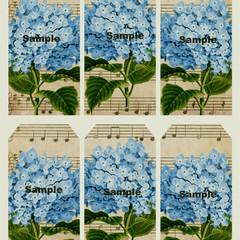 Hydrangea Blue Flower 6 x Gift Tags Craft Card Birthday Wedding