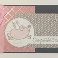 Congratulations - Graduation - baby  Card - Pig