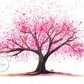 """Cherry Blossom 2"" Watercolour Print"