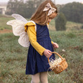 Cream Fabric Butterfly Wings