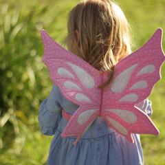 Pretty Pink Fairy Wings