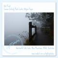 Summer Morning Mist 4, Wentworth Falls Lake