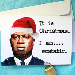 Brooklyn Nine Nine Captain Holt Funny Christmas Card