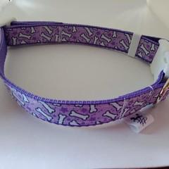 Purple dog bone print adjustable dog collar small / medium