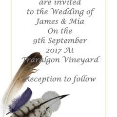 FEATHERS WEDDING INVITATION SAMPLE