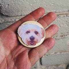 Custom Handmade Pet Magnet
