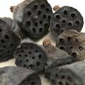 Mini Lotus pods- Dark brown - Dryed - Natural -  8pcs - Floral - Decoration