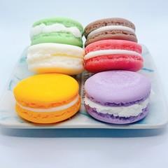 Macaron Soy Melt Set