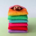 Miniature Felt Platypus, play set, animal bed, rainbow wool felt, Australian
