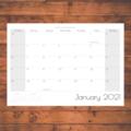 A Year of Birds 2021  Photographic Calendar