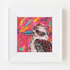 Pink Boho Kooka Kookaburra Circle 8 x 8 Inches Print.