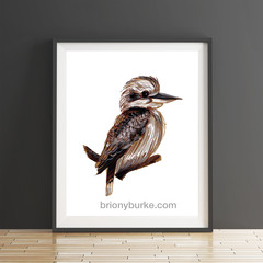Sepia Brown Kookaburra 8 x 10 Inches Print.