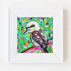 Green Boho Kooka Kookaburra 8 x 8 Inches Print.