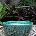 Jade Garden Small Succulent Bowl