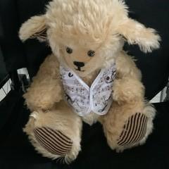 Teddy Bear 15inches