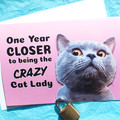 Crazy Cat Lady Funny Birthday Card