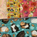 Quirky guinea pigs 4 pack kitchen cloths