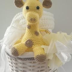 Giraffe Gift Basket