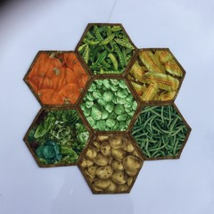 Vegetable Patch  Hand-pieced Hexagon Table Centre