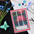 Set of 5 Handmade Notecards - Waterlilies