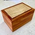 Keepsake | Jewellery | Wood Box In New Guinea Rosewood And African Tulip