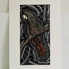 Red-Tailed Black Cockatoo 4/10 -  Linoprint - Watercolour
