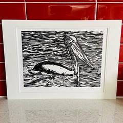 Australian Birds - Pelican 3/25 -  Linoprint