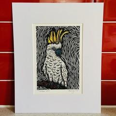 Australian Birds - Cockatoo 3/25 - Linoprint and Watercolour