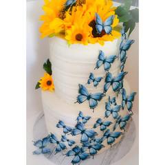 Edible Wafer Paper Butterflies - Pack of 24 - PRE-CUT - WP008