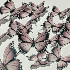 Edible Wafer Paper Butterflies - Pack of 24 - PRE-CUT - WP009