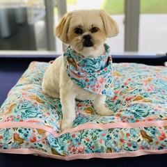 Dog Beds-Mermaid Cotton Print-62cm x 52cm
