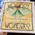 Cloth Books-Woodsy Wonders-Beautiful Children Stories