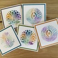Peacock card pack | Pack of 5