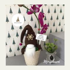 Nisse   Gnome - Morphaeni - Orchid   H:30cm