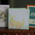 CARD BUNDLE OF THREE