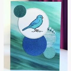 Birdie circles card