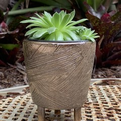 Golden glow footed planter